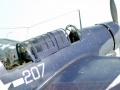 Halinski 1/33 Картонный SB2C-4 Helldiver - Обуздать скотину
