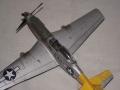 ICM 1/48 P-51D Mustang