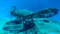 Revell 1/72 Arado Ar-196 - Ржавый submarine