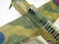 Special Hobby 1/72 Brewster SB2A Buccaneer - Американец в британском мундире