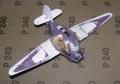 Самодел АНТ-25 Egg Plane