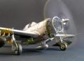 Academy 1/48 P-47N Thunderbolt Expected Goose