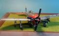 Tamiya 1/48 P-47D Thunderbolt - Под Алкладовым соусом два раза