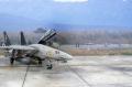 Hasegawa 1/72 F-14D Grim Reapers