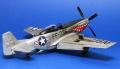 ICM 1/48 F-51D-30 Mustang - О дареном коне и его зубах