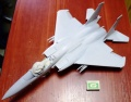 Tamiya 1/32 F-15C Eagle