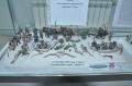 Репортаж IX-я выставка стендового моделизма, Ступино, Россия