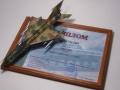 Eduard 1/48 МиГ-21Р – Глаза армии