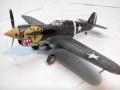 ARII 1/48 P-40(E) Kittyhawk