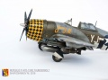 Tamiya 1/48 P-47D-15RE Thunderbolt