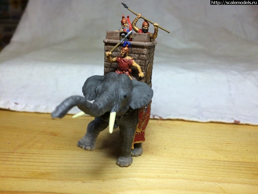 """#1282486/ 1/72 Звезда """"Боевые слоны"""" (ГОТОВО) Закрыть окно"""