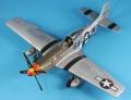 ICM 1/48 P-51D-25 Mustang