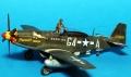 Tamiya 1/48 P-51D-5 Mustang - Муська и полкило смолы