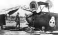 Eduard 1/48 Albatros D.III Brumowski – Баночка с икрой