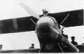 Roden 1/32 Albatros D.III Verner Voss