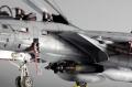 Tamiya 1/32 F-14A Tomcat