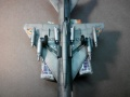 Eduard 1/48 МиГ-21МФ С1531 Индийских ВВС