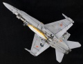 Kinetic 1/48 EF-18A Tigermeet
