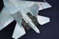 Academy 1/48 Су-27УБ, аэродром Золотая Долина