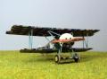 Roden 1/72 Fokker D.VI - Что такое лозенг?