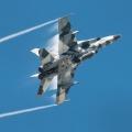 Hobbyboss 1/48 F/a-18A+ Hornet - Russians are coming!