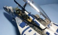 Hasegawa 1/48 F/A-18F Hornet - 100 Years of Naval Aviation 2011
