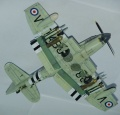 Special Hobby 1/72  Fairey Firefly Mk.V