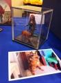 5 Рижская международная выставка стендового моделизма