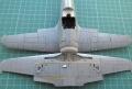 Hasegawa 1/48 Mitsubishi J2M3 Raiden - Угасшее солнце