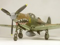 Eduard 1/48 P-400 Air A Cutie - перепил в зубастую