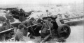 GASO.LINE 1/48 РАК-40 и Tamiya Krupp  Protze Kfz.70