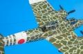 Hasegawa 1/72 Kawasaki Ki-45 Kai Koh TORYU