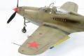 Hasegawa 1/48 P-39 Airacobra Сотка