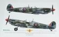 Обзор Exito Decals 1/48 Supermarine Spitfires: Sweet Fourteens и Sexy Spitfires