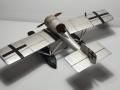 Самодел 1/48 LFG (Roland) V.19 Putbus