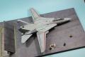 GWH 1/72 F-14D Tomcat