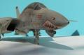 1/32 F-14 Tomcat - У модели старость - моделисту не в радость