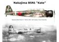 Hasegawa 1/72 B5N1 Kate - Первый Кейт комом