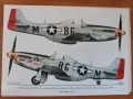 Обзор Exito Decals ED48008 - 1/48 Yoxford Girls - P-51D Mustang