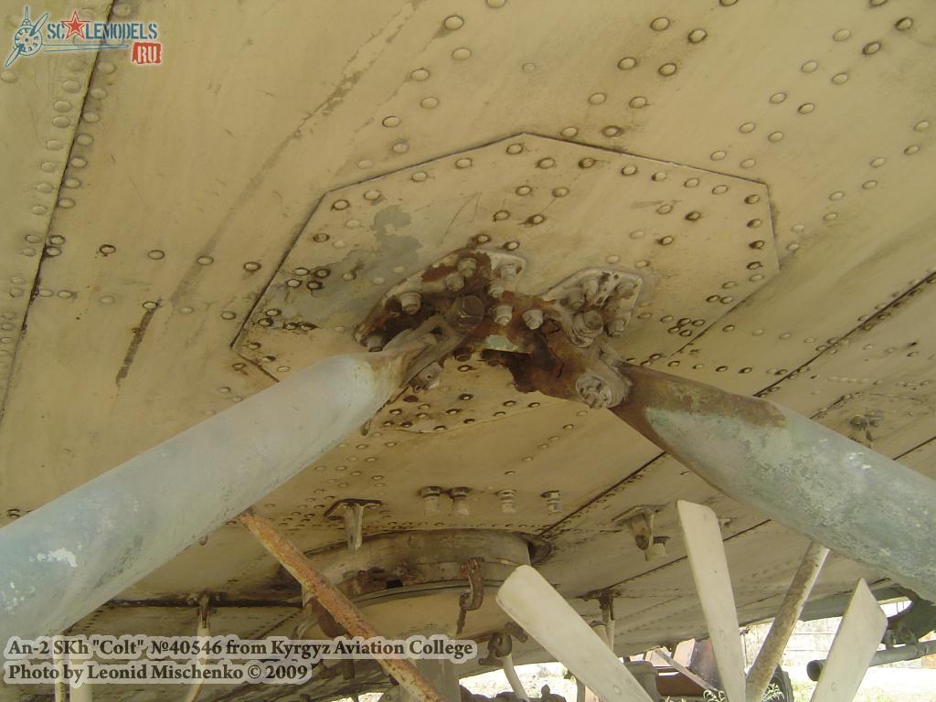 Ан-2СХ (Киргизский Авиационный Колледж) : w_an2skh_kyrgyz : 18956