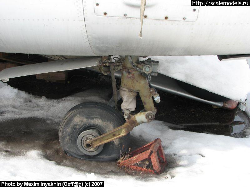 L-29 Delphin (Егорьевск) : w_l29_egoryevsk : 5603