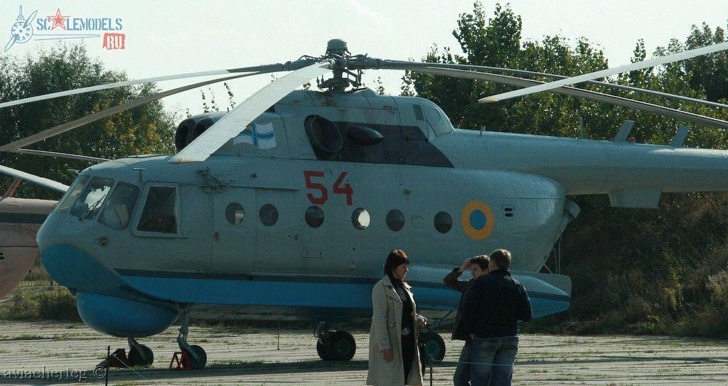 Ми-14ПЛ (Киев) : w_mi14pl_kiev : 9963