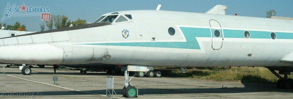 Ту-134УБЛ (Киев) : w_tu134ubl_kiev : 10113